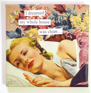 anne-taintor-i-dreamt-my-whole-house-was-clean-1